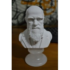Escultura Busto Sir Charles Darwin Marmore 15cm Made Italy